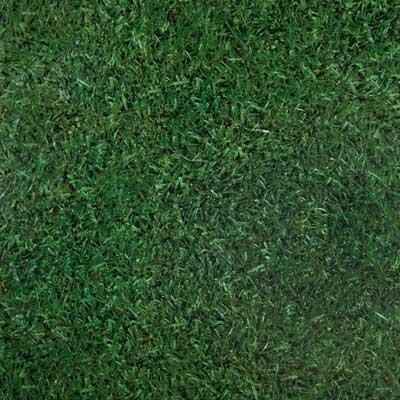 Lvt flooring luxury vinyl tile and luxury vinyl plank for Grass carpet tiles